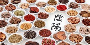 Description de la discipline dietetique chinoise